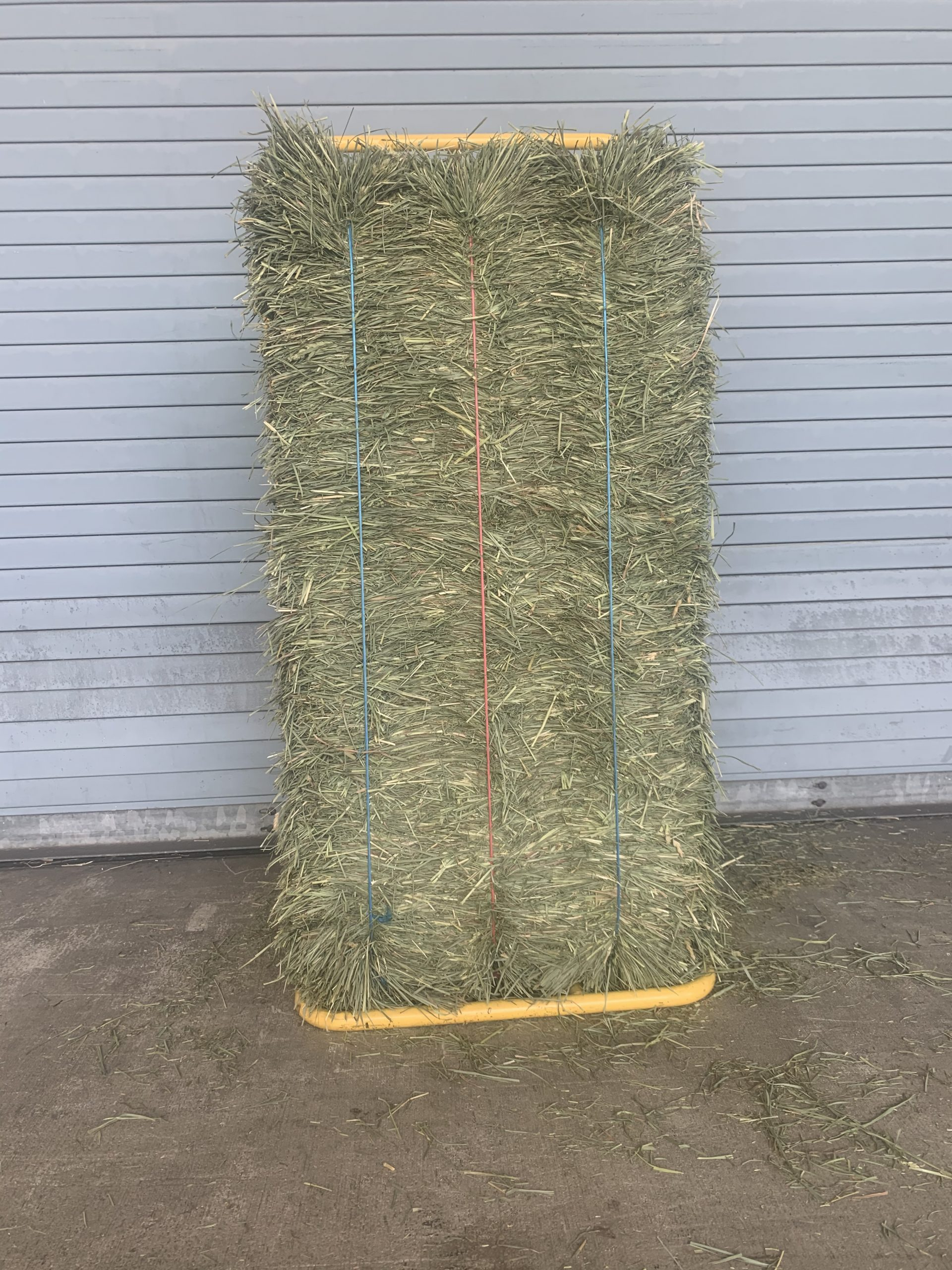 H702 3 tie Orchardgrass/Alfalfa mix hay
