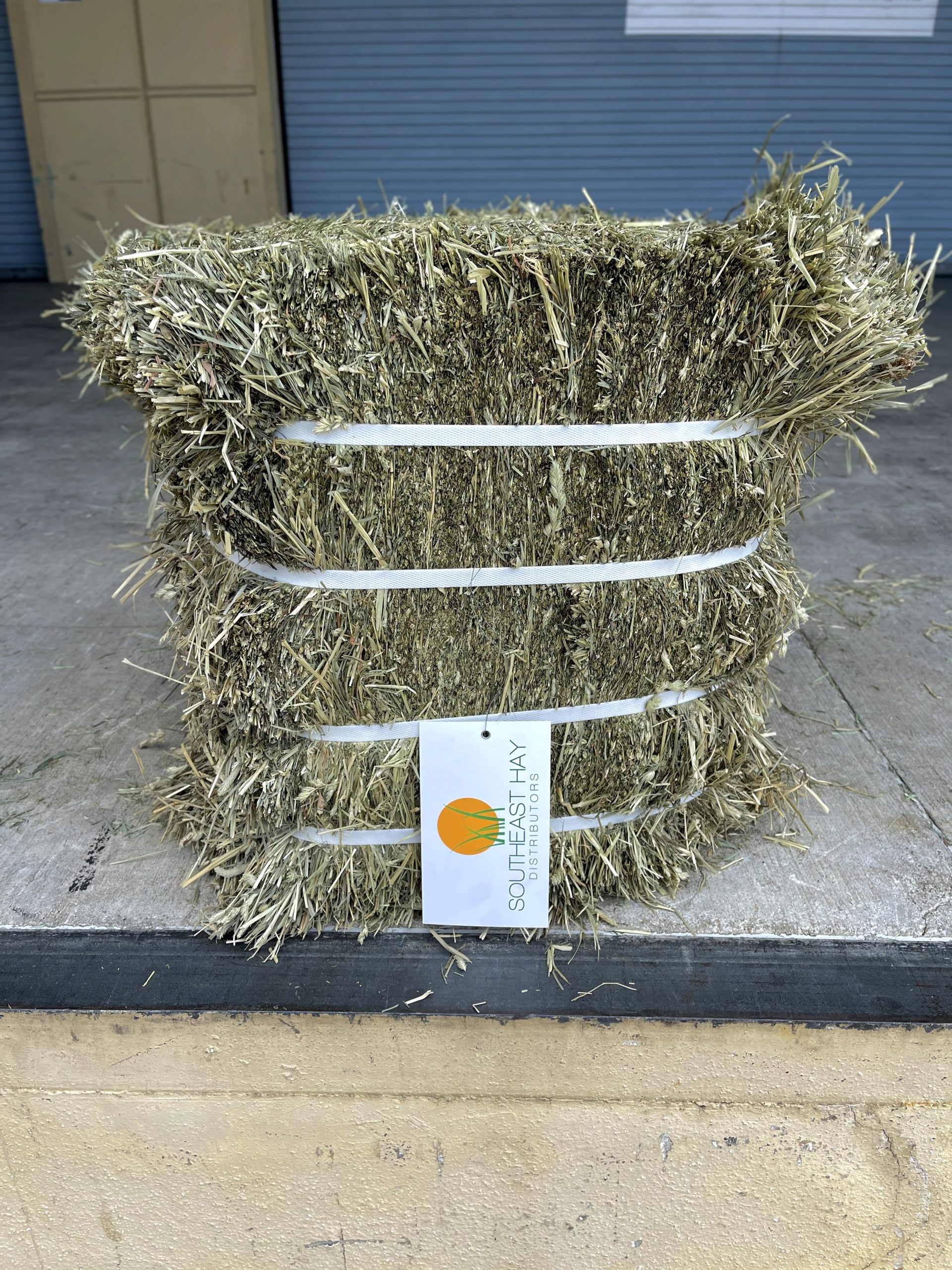 H604 | Timothy 1st Cut Double Compressed Bale