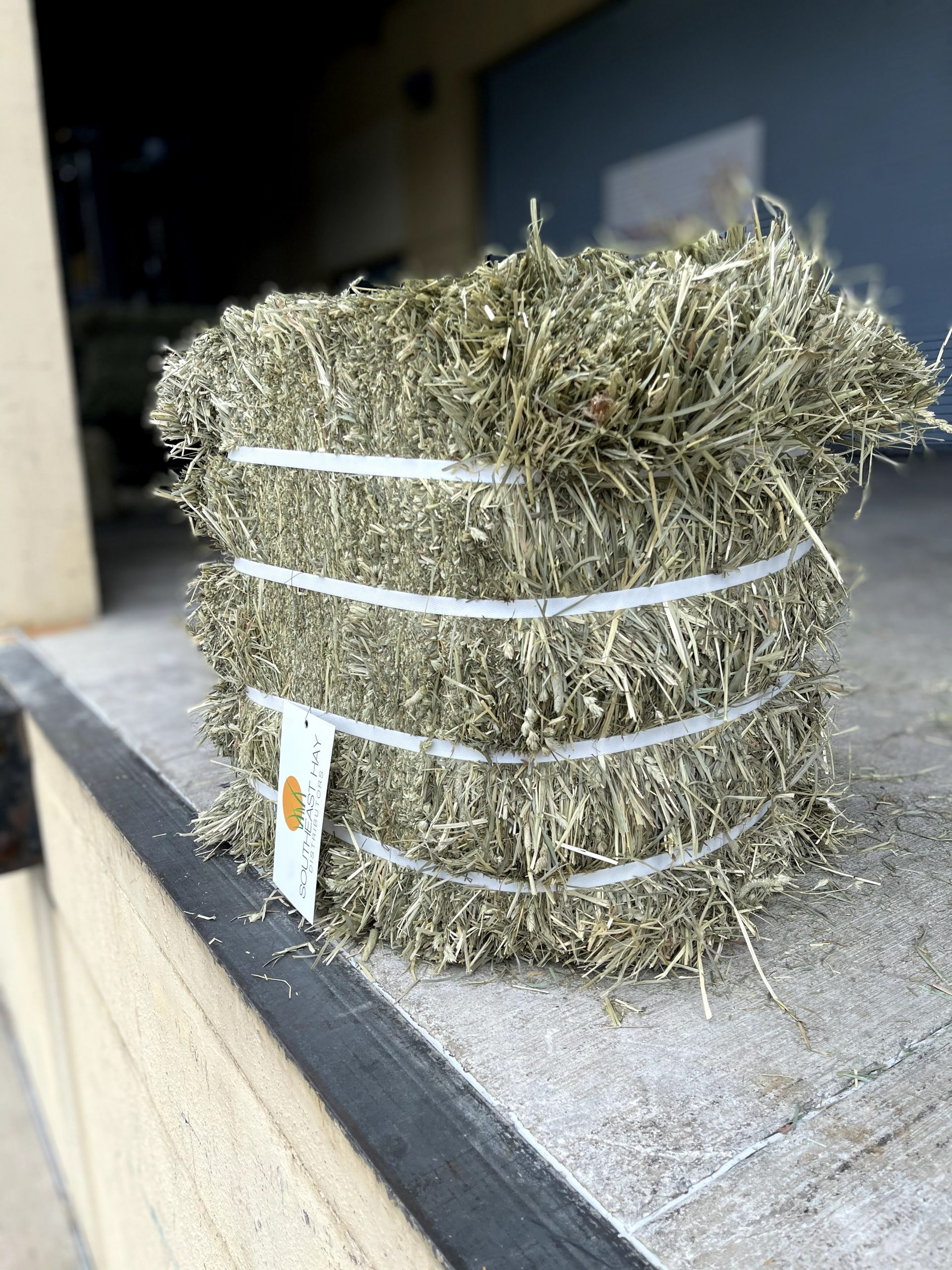 H604   Timothy 1st Cut Double Compressed Bale